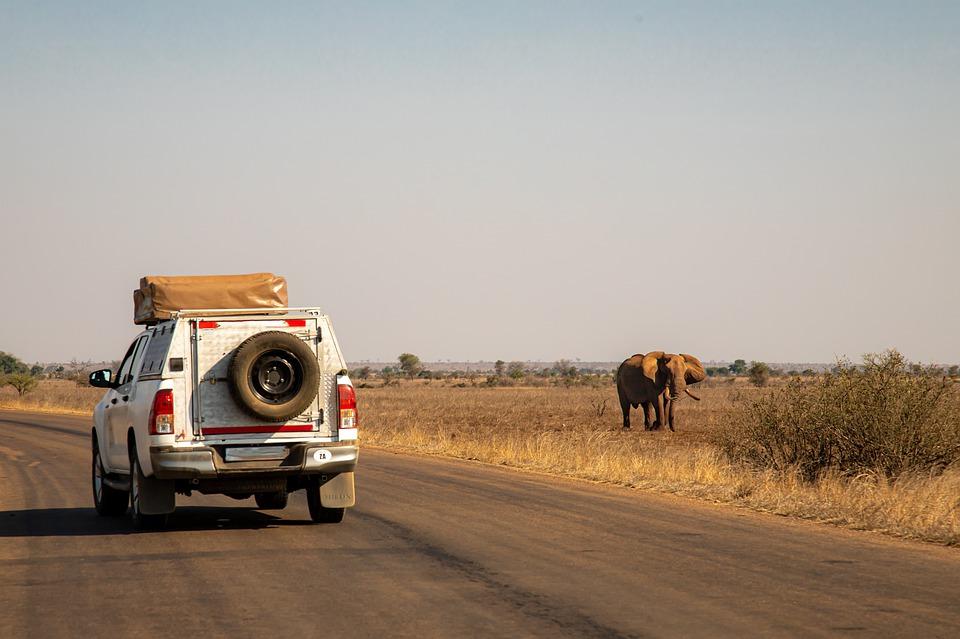 httpswww.chezbru.com_Zoom sur les moyens de transport au pays de Mandela
